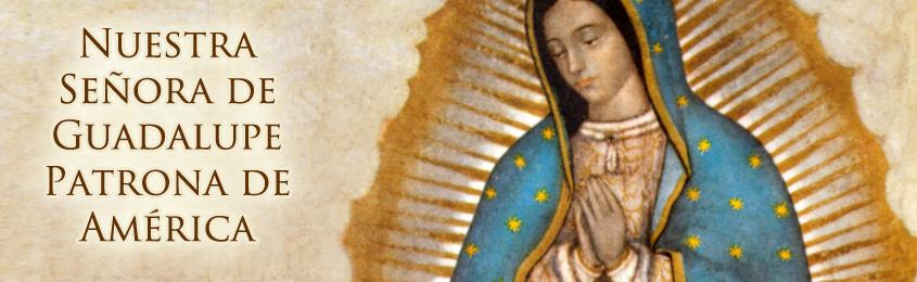 Nuestra Señora de Guadalupe Patrona de América Latina