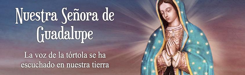 Nuestra Señora de Guadalupe: LA VOZ DE LA TÓRTOLA SE HA ESCUCHADO EN NUESTRA TIERRA